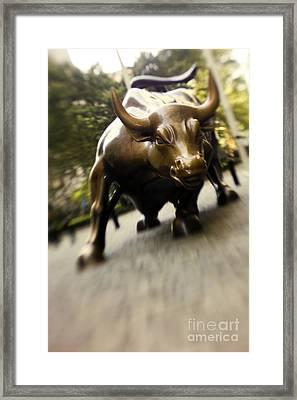 Wall Street Bull Framed Print by Tony Cordoza