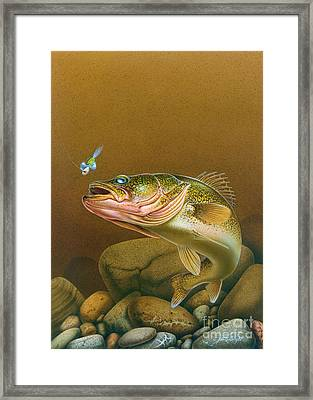 Walleye And Spinner Jig Framed Print