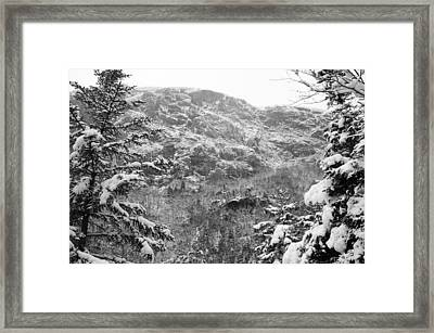 Wallface In Winter Framed Print
