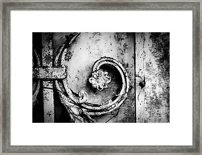 Wallflower Framed Print by Dean Harte