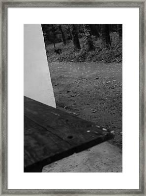 Wallpaper Framed Print by Bogdan Dragomir