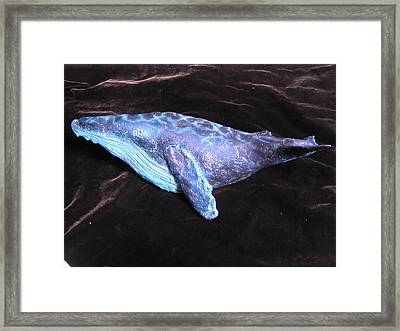Wally The Whale Framed Print by Dan Townsend
