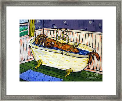 Walrus Bather Framed Print by Jay  Schmetz