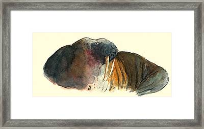 Walrus Framed Print by Juan  Bosco