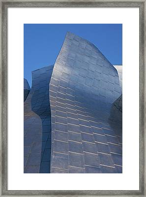 Walt Disney Concert Hall Framed Print by Mark Williamson