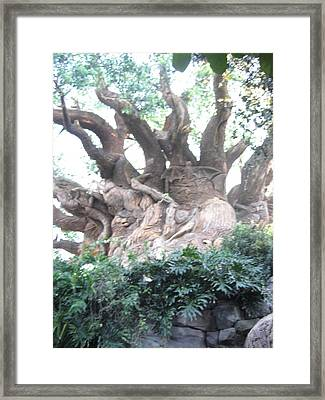Walt Disney World Resort - Animal Kingdom - 121232 Framed Print