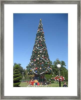 Walt Disney World Resort - Magic Kingdom - 1212132 Framed Print by DC Photographer