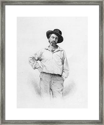 Walt Whitman Frontispiece To Leaves Of Grass Framed Print by American School