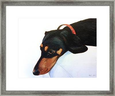 Walter - Waiting For Momma Framed Print by Kevin Hill