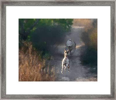 Framed Print featuring the photograph Wanda by Juan Carlos Ferro Duque