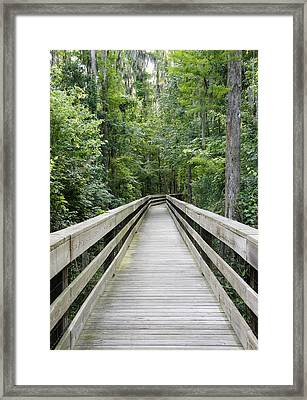 Framed Print featuring the photograph Wander by Laurie Perry