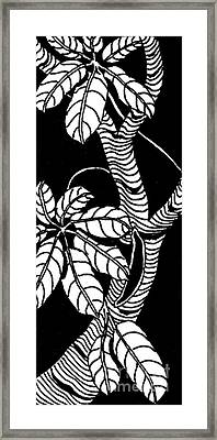 Wandering Leaves Octopus Tree Design Framed Print by Mukta Gupta