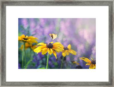 Wanderlust Framed Print by Amy Tyler