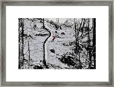 Wanderschaft Framed Print by Klaas Hartz