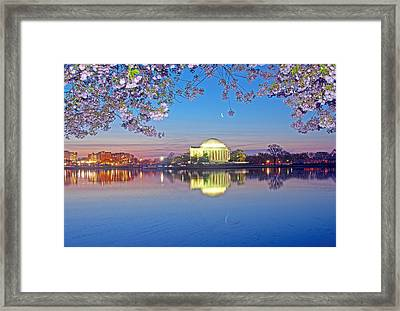 Waning Crescent Cherry Blossom Moon Framed Print