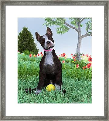 Wanna Play? Framed Print