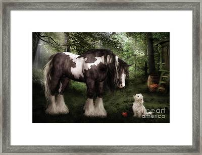 Want To Play Framed Print by Shanina Conway