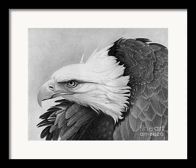 Print On Acrylic Drawings Framed Prints