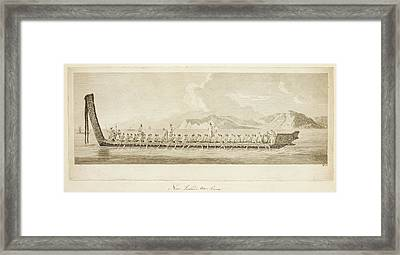 War Canoe Of New Zealand Framed Print by British Library