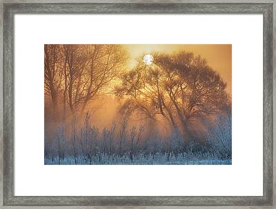 Warm And Cold Framed Print