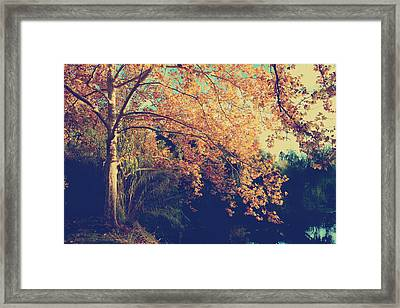 Warm Arms Framed Print