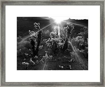 Warm Desert Sunrise Framed Print by Leland D Howard