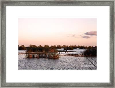 Warm Evening Framed Print by Juan Romagosa