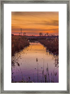 Warm Reflection Framed Print by Bruno Santos