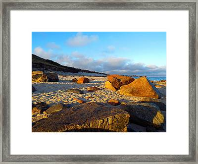 Warm Sand Framed Print by Dianne Cowen