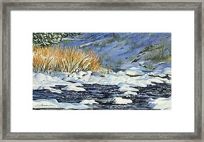 Warm Sun On The Winter Willows Framed Print by Sharon Lazarowicz