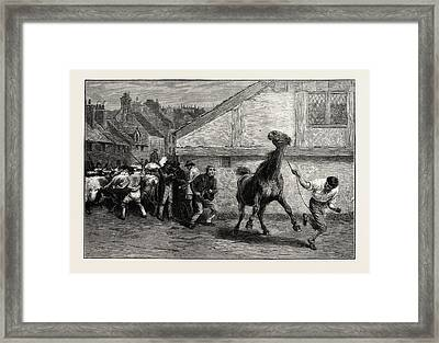Warranted Quiet To Ride Or Drive Framed Print by English School