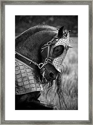 Warrior Horse Framed Print