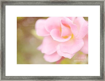 Warrior Framed Print by Beve Brown-Clark Photography
