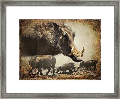 Warthog Profile Framed Print by Ronel Broderick