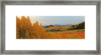 Wasatch Gold Framed Print by Johnny Adolphson