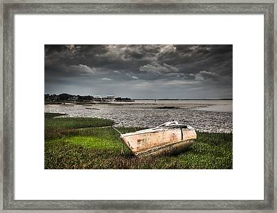 Washed Ashore Framed Print by Andrew Crispi