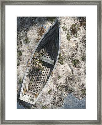 Washed Ashore Framed Print by Cynthia Decker