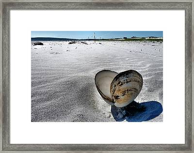 Washed Ashore Framed Print by Janice Drew