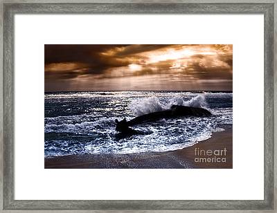 Washed Out To Sea - Outer Banks Framed Print by Dan Carmichael