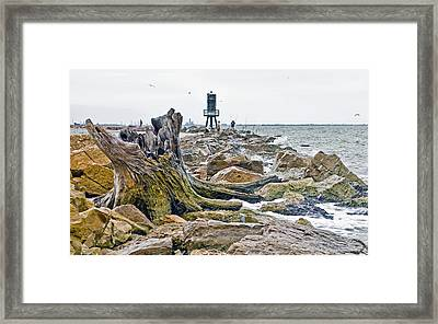 Washed Up Framed Print by John Collins