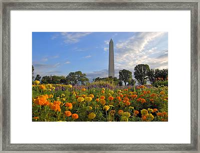 Framed Print featuring the photograph Washimgtom Monument In Spring by Michael Donahue