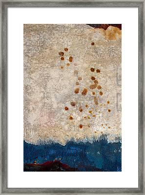 Washing Ashore Framed Print by Carol Leigh