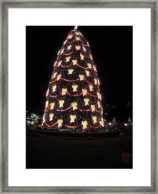 Washington Dc - Christmas At The Ellipse - 12121 Framed Print