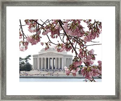Washington Dc In Bloom Framed Print by Jennifer Wheatley Wolf