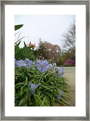 Washington National Cathedral - Washington Dc - 011348 Framed Print