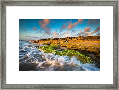 Washington Oaks State Park Coquina Rocks Beach St. Augustine Fl Beaches Framed Print by Dave Allen