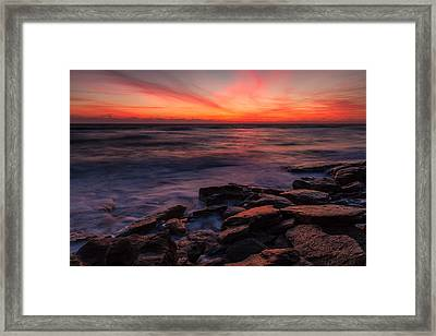 Washington Oaks Winter Sunrise Framed Print