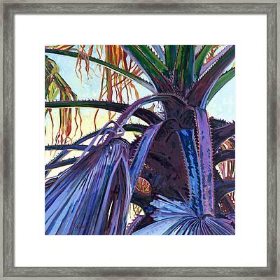 Washingtonia Framed Print by David Randall