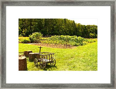 Washington's Garden Framed Print