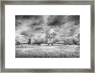 Washita Framed Print by Harry H Hicklin